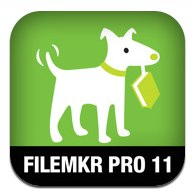 filemaker pro 16 the missing manual